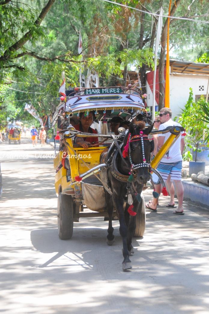 Rua principal de Gili T e o único meio de transporte possível e disponível na ilha